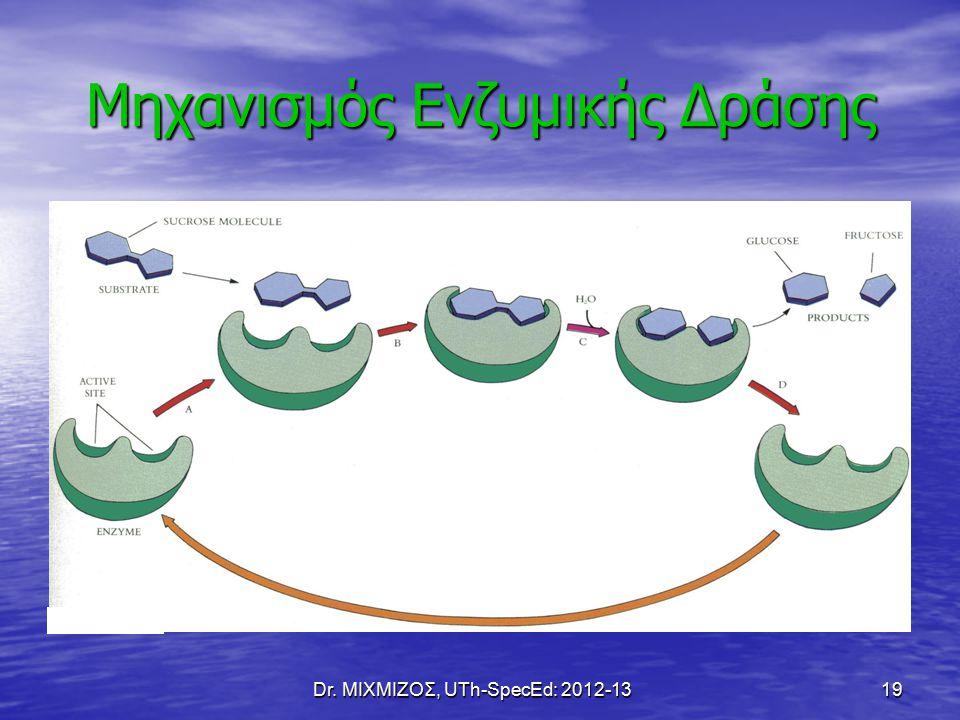 Dr. ΜΙΧΜΙΖΟΣ, UTh-SpecEd: 2012-13 19 Μηχανισμός Ενζυμικής Δράσης