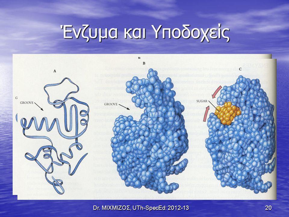Dr. ΜΙΧΜΙΖΟΣ, UTh-SpecEd: 2012-13 20 Ένζυμα και Υποδοχείς