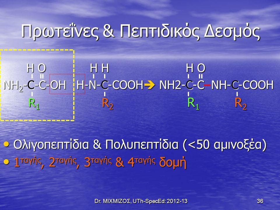 Dr. ΜΙΧΜΙΖΟΣ, UTh-SpecEd: 2012-1336 Πρωτεΐνες & Πεπτιδικός Δεσμός H O H H H O H O H H H O ΝΗ 2 -C-C-OH H-N-C-COOH  NH2-C-C NH-C-COOH R 1 R 2 R 1 R 2