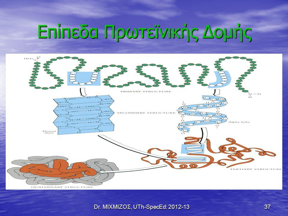 Dr. ΜΙΧΜΙΖΟΣ, UTh-SpecEd: 2012-13 37 Επίπεδα Πρωτεϊνικής Δομής