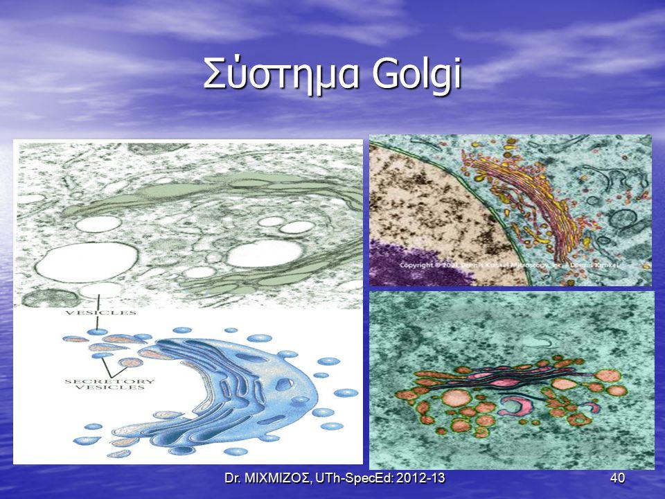 Σύστημα Golgi Dr. ΜΙΧΜΙΖΟΣ, UTh-SpecEd: 2012-13 40