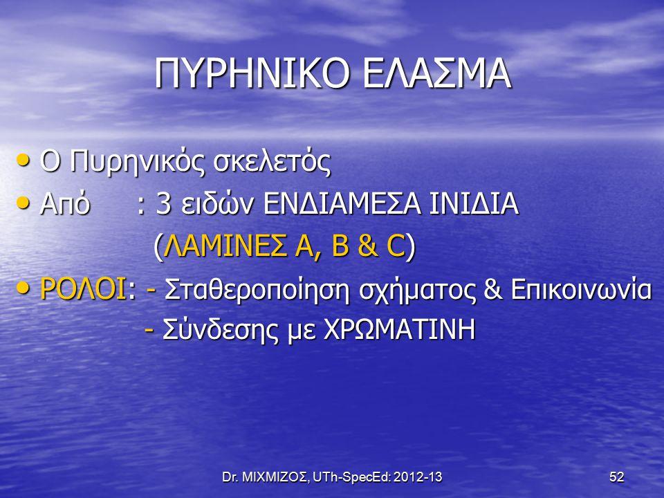 Dr. ΜΙΧΜΙΖΟΣ, UTh-SpecEd: 2012-13 52 ΠΥΡΗΝΙΚΟ ΕΛΑΣΜΑ Ο Πυρηνικός σκελετός Ο Πυρηνικός σκελετός Από : 3 ειδών ΕΝΔΙΑΜΕΣΑ ΙΝΙΔΙΑ Από : 3 ειδών ΕΝΔΙΑΜΕΣΑ