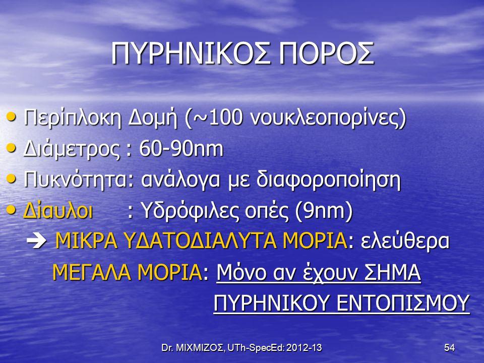Dr. ΜΙΧΜΙΖΟΣ, UTh-SpecEd: 2012-13 54 ΠΥΡΗΝΙΚΟΣ ΠΟΡΟΣ Περίπλοκη Δομή (~100 νουκλεοπορίνες) Περίπλοκη Δομή (~100 νουκλεοπορίνες) Διάμετρος : 60-90nm Διά