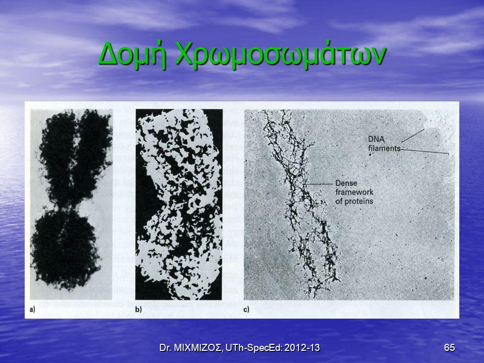Dr. ΜΙΧΜΙΖΟΣ, UTh-SpecEd: 2012-13 65 Δομή Χρωμοσωμάτων