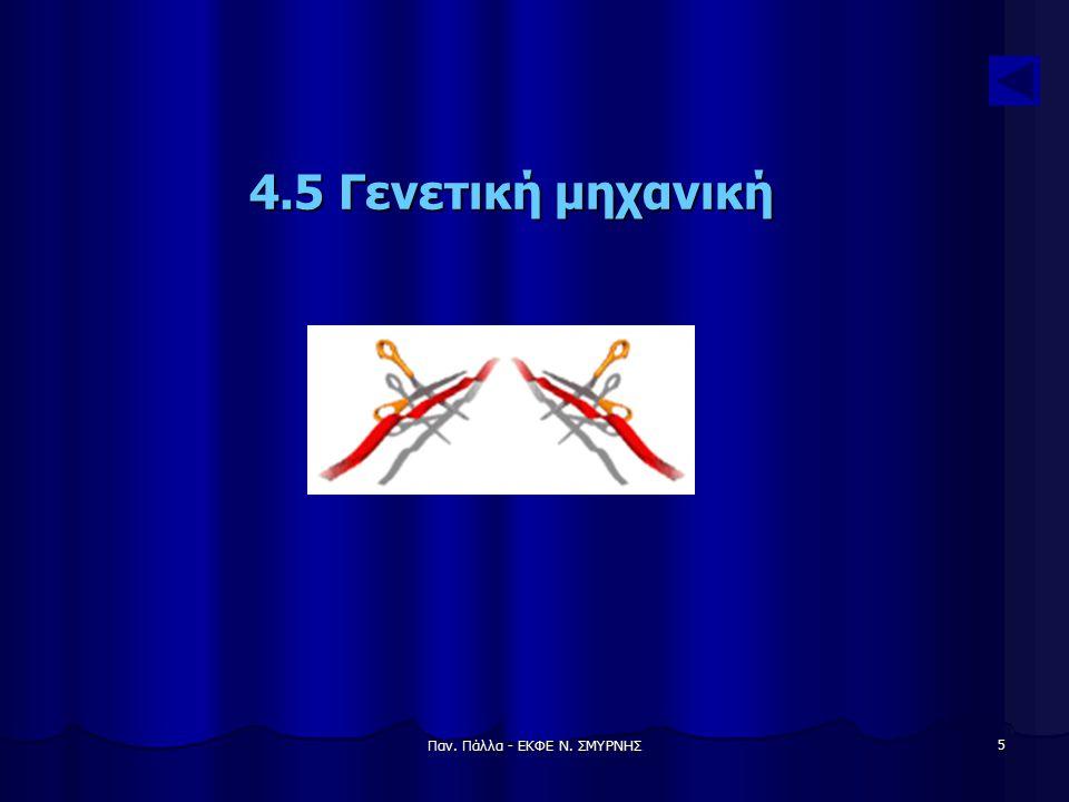 Παν. Πάλλα - ΕΚΦΕ Ν. ΣΜΥΡΝΗΣ 5 4.5 Γενετική μηχανική