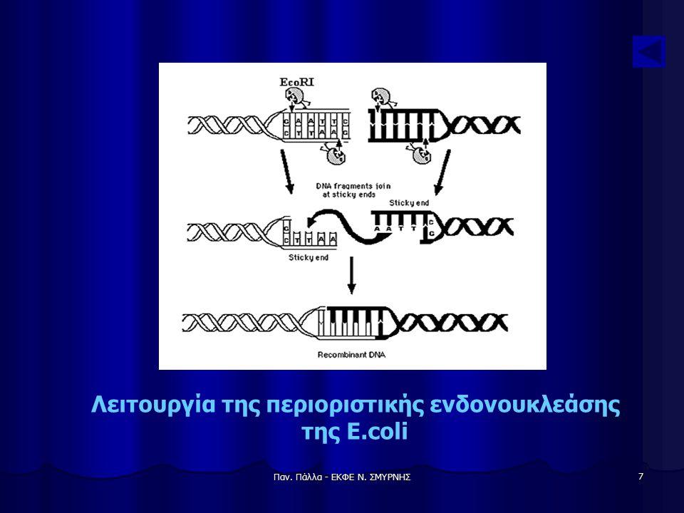 Παν. Πάλλα - ΕΚΦΕ Ν. ΣΜΥΡΝΗΣ 8 Δημιουργία ανασυνδυασμένου DNA