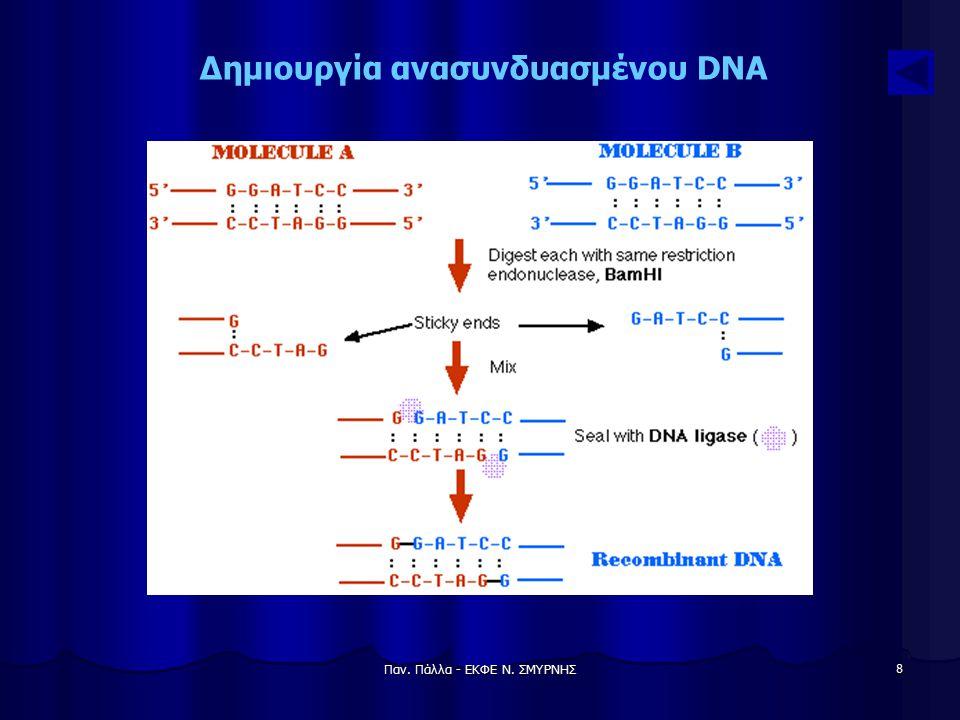 Παν. Πάλλα - ΕΚΦΕ Ν. ΣΜΥΡΝΗΣ 9 Δημιουργία ανασυνδυασμένου DNA