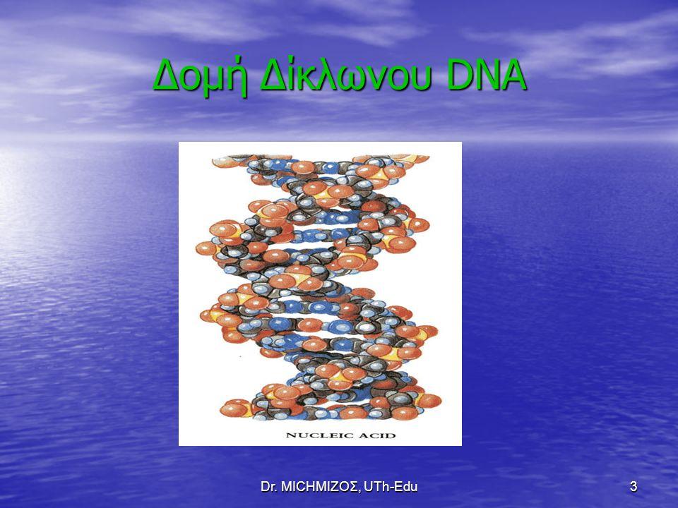 Dr. ΜΙCHΜΙΖΟΣ, UTh-Edu3 Δομή Δίκλωνου DNA
