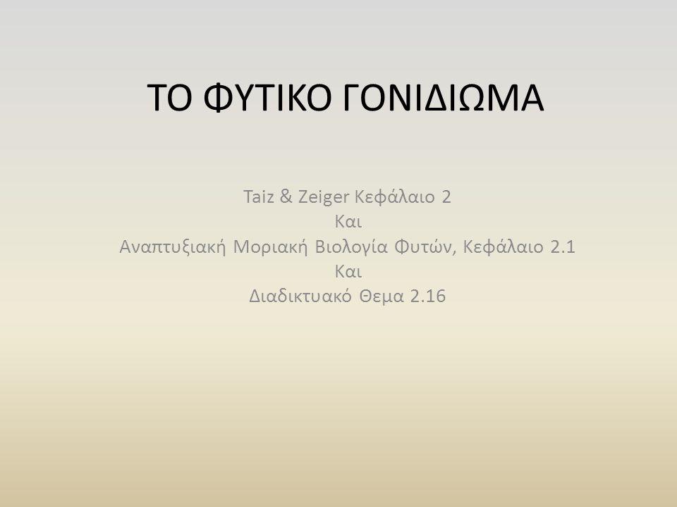 ΤΟ ΦΥΤΙΚΟ ΓΟΝΙΔΙΩΜΑ Taiz & Zeiger Κεφάλαιο 2 Και Αναπτυξιακή Μοριακή Βιολογία Φυτών, Κεφάλαιο 2.1 Και Διαδικτυακό Θεμα 2.16