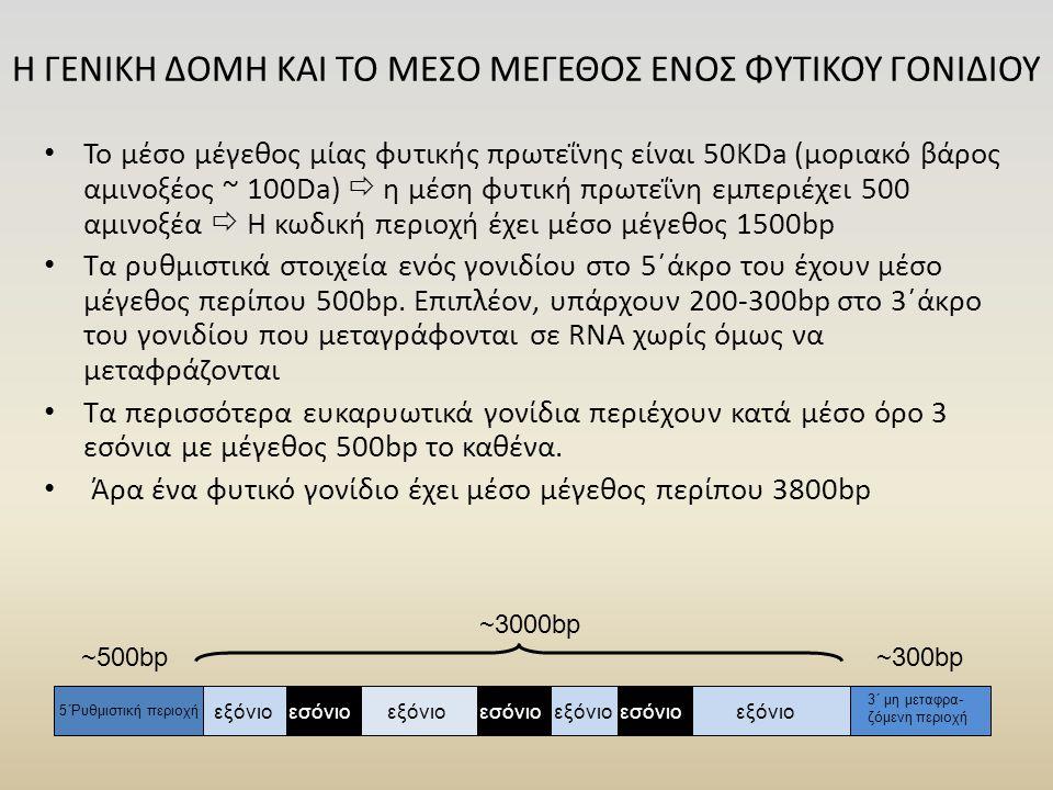 Η ΓΕΝΙΚΗ ΔΟΜΗ ΚΑΙ ΤΟ ΜΕΣΟ ΜΕΓΕΘΟΣ ΕΝΟΣ ΦΥΤΙΚΟΥ ΓΟΝΙΔΙΟΥ Το μέσο μέγεθος μίας φυτικής πρωτεΐνης είναι 50KDa (μοριακό βάρος αμινοξέος ~ 100Da)  η μέση