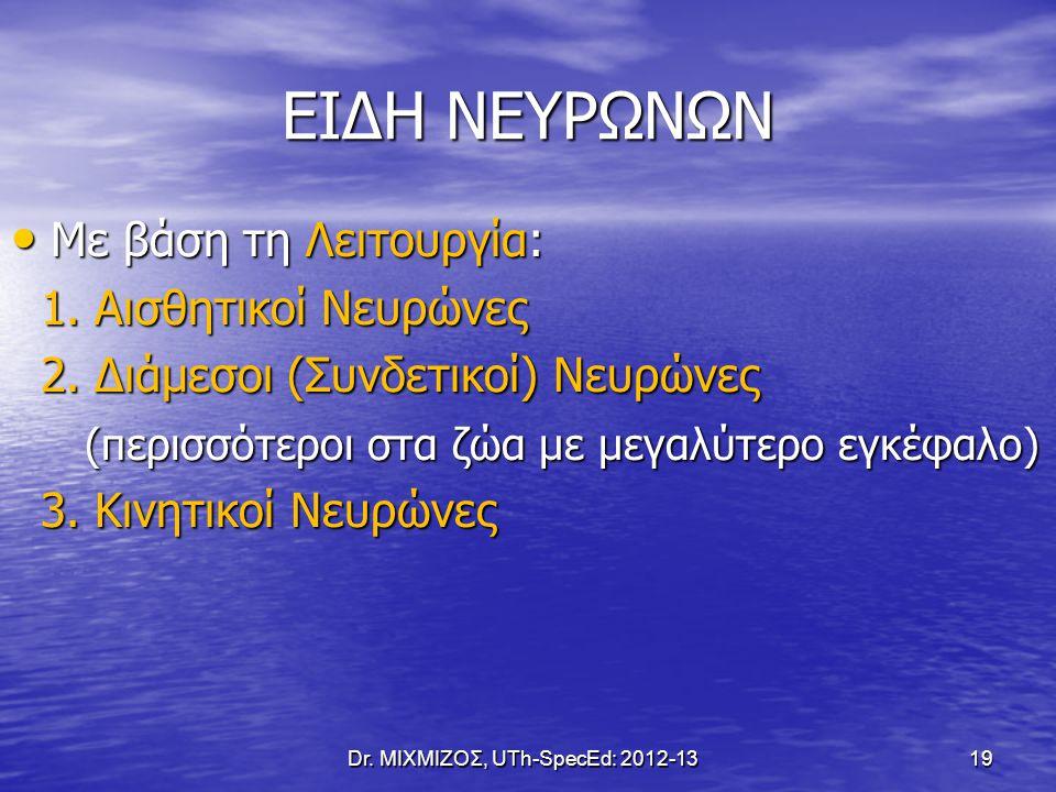 ΕΙΔΗ ΝΕΥΡΩΝΩΝ Με βάση τη Λειτουργία: Με βάση τη Λειτουργία: 1. Αισθητικοί Νευρώνες 1. Αισθητικοί Νευρώνες 2. Διάμεσοι (Συνδετικοί) Νευρώνες 2. Διάμεσο