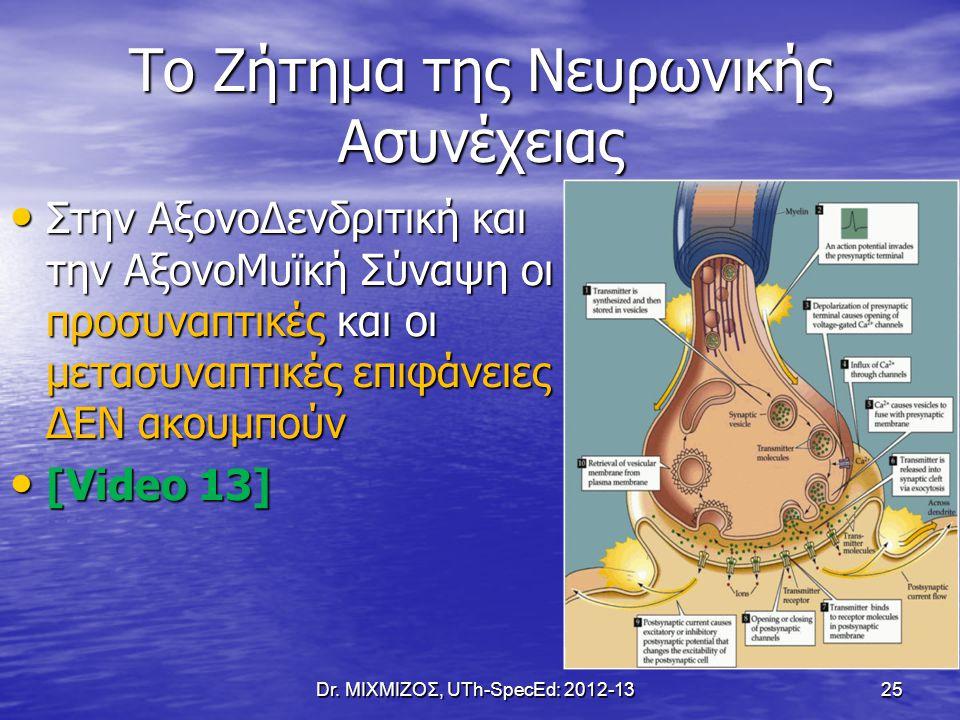 Το Ζήτημα της Νευρωνικής Ασυνέχειας Στην ΑξονοΔενδριτική και την ΑξονοΜυϊκή Σύναψη οι προσυναπτικές και οι μετασυναπτικές επιφάνειες ΔΕΝ ακουμπούν Στη