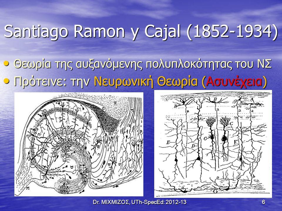 Santiago Ramon y Cajal (1852-1934) Θεωρία της αυξανόμενης πολυπλοκότητας του ΝΣ Θεωρία της αυξανόμενης πολυπλοκότητας του ΝΣ Πρότεινε: την Νευρωνική Θ