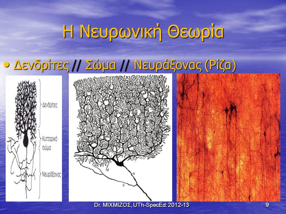 Η Νευρωνική Θεωρία Δενδρίτες // Σώμα // Νευράξονας (Ρίζα) Δενδρίτες // Σώμα // Νευράξονας (Ρίζα) Dr. ΜΙΧΜΙΖΟΣ, UTh-SpecEd: 2012-13 9