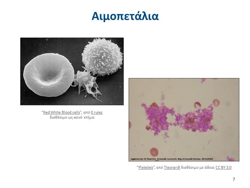 """Αιμοπετάλια 7 """"Red White Blood cells"""", από E rulez διαθέσιμο ως κοινό κτήμαRed White Blood cellsE rulez """"Platelets"""", από Tleonardi διαθέσιμο με άδεια"""
