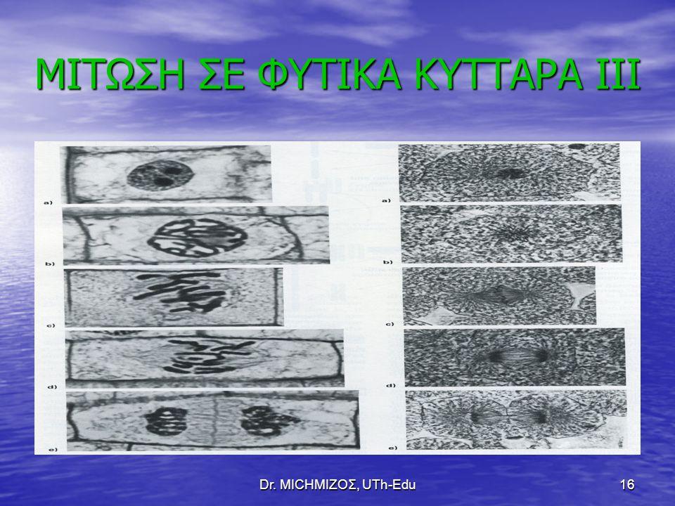 Dr. ΜΙCHΜΙΖΟΣ, UTh-Edu16 ΜΙΤΩΣΗ ΣΕ ΦΥΤΙΚΑ ΚΥΤΤΑΡΑ ΙΙΙ