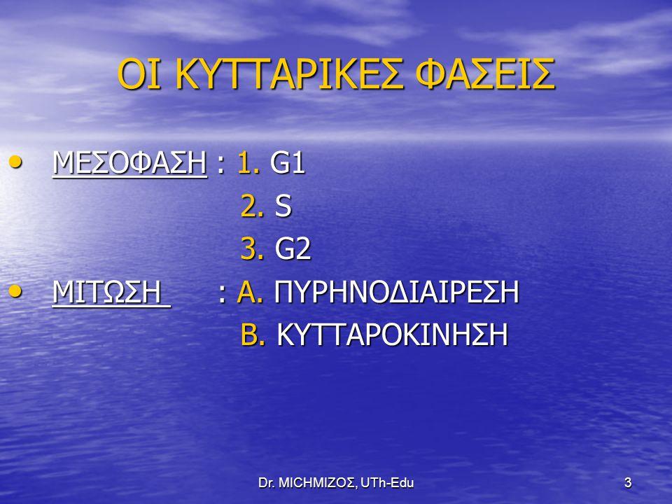 Dr. ΜΙCHΜΙΖΟΣ, UTh-Edu3 ΟΙ ΚΥΤΤΑΡΙΚΕΣ ΦΑΣΕΙΣ ΜΕΣΟΦΑΣΗ : 1. G1 ΜΕΣΟΦΑΣΗ : 1. G1 2. S 2. S 3. G2 3. G2 ΜΙΤΩΣΗ : Α. ΠΥΡΗΝΟΔΙΑΙΡΕΣΗ ΜΙΤΩΣΗ : Α. ΠΥΡΗΝΟΔΙΑΙ