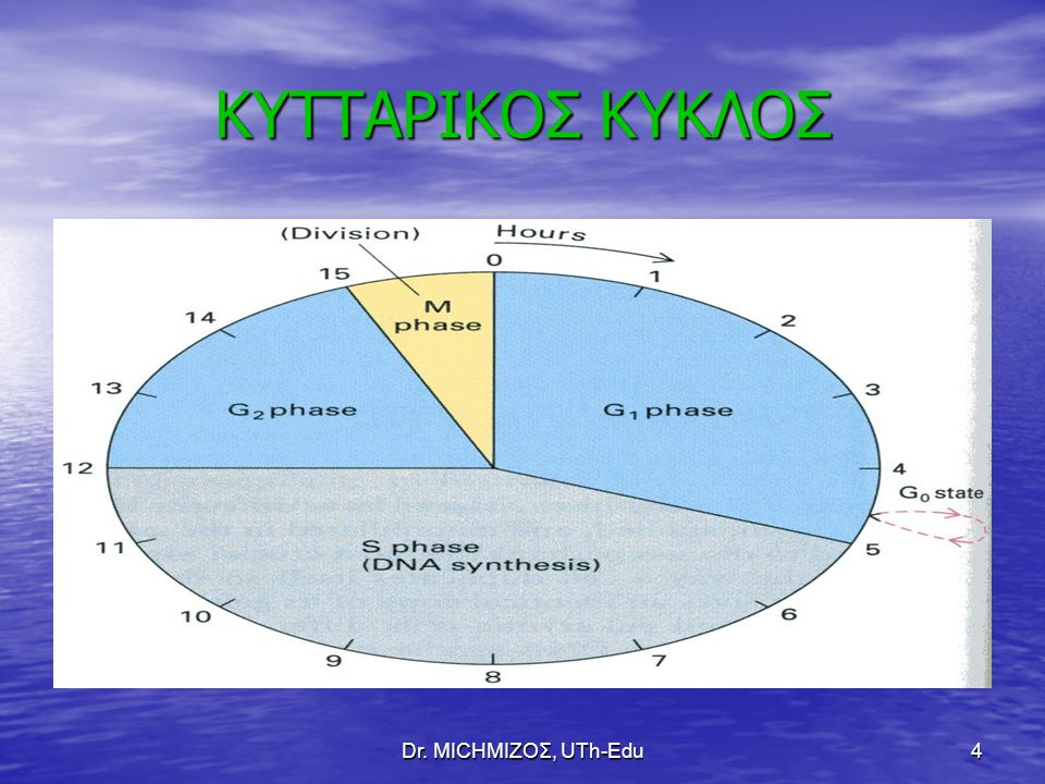 Dr. ΜΙCHΜΙΖΟΣ, UTh-Edu4 ΚΥΤΤΑΡΙΚΟΣ ΚΥΚΛΟΣ