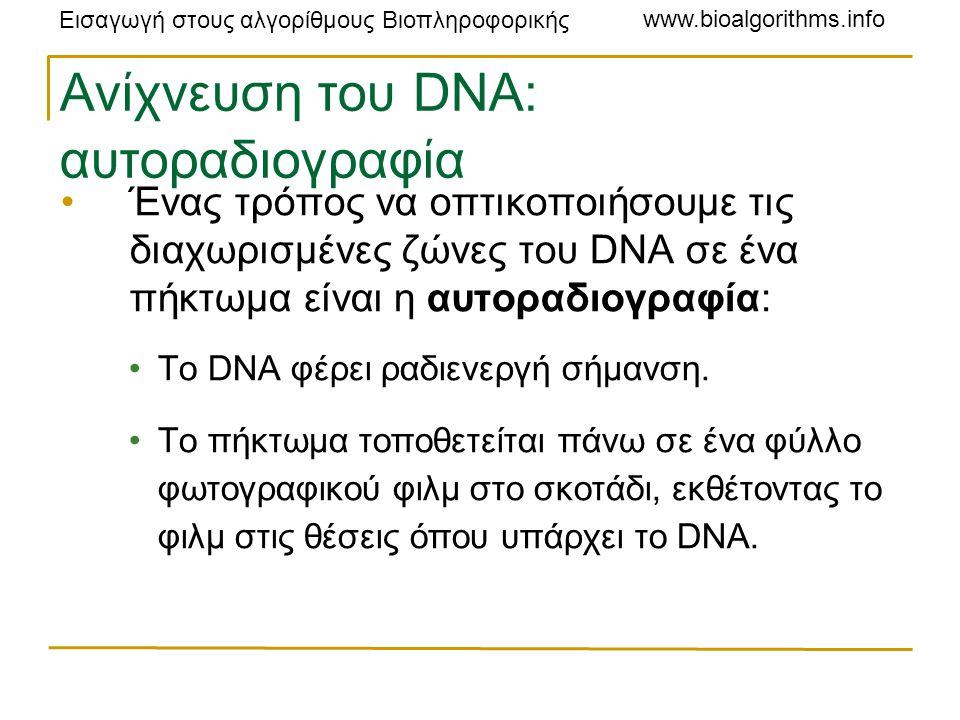 Εισαγωγή στους αλγορίθμους Βιοπληροφορικής www.bioalgorithms.info Ανίχνευση του DNA: αυτοραδιογραφία Ένας τρόπος να οπτικοποιήσουμε τις διαχωρισμένες ζώνες του DNA σε ένα πήκτωμα είναι η αυτοραδιογραφία: Το DNA φέρει ραδιενεργή σήμανση.