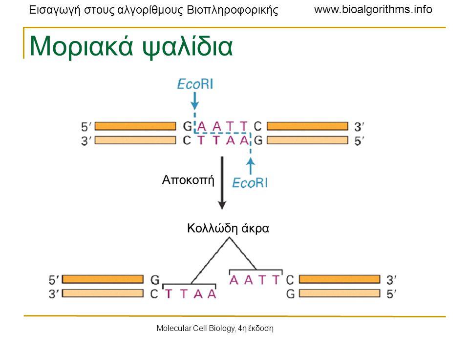 Εισαγωγή στους αλγορίθμους Βιοπληροφορικής www.bioalgorithms.info L = { 2, 2, 3, 3, 4, 5, 6, 7, 8, 10 } X = { 0, 2, 10 } Για το y = 7, D(y, X ) = {7, 5, 3}.