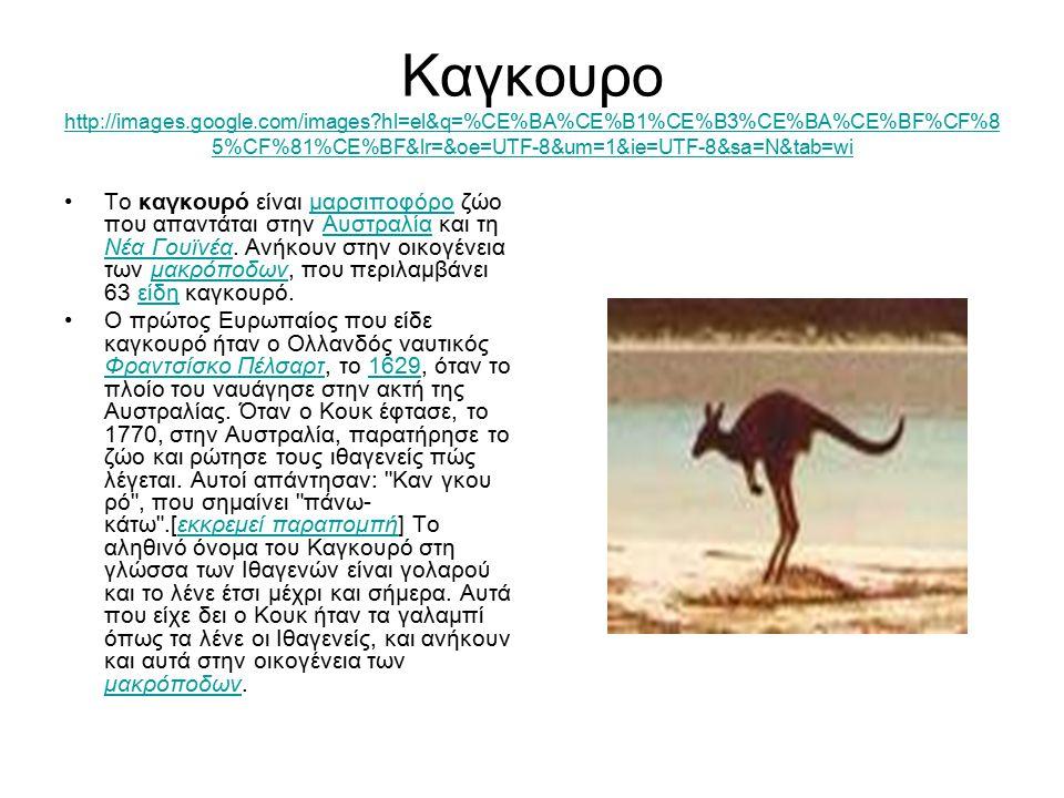 Καγκουρο http://images.google.com/images?hl=el&q=%CE%BA%CE%B1%CE%B3%CE%BA%CE%BF%CF%8 5%CF%81%CE%BF&lr=&oe=UTF-8&um=1&ie=UTF-8&sa=N&tab=wi http://image