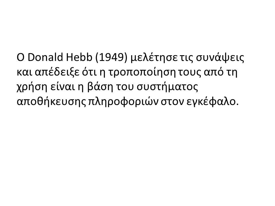 Ο Donald Hebb (1949) μελέτησε τις συνάψεις και απέδειξε ότι η τροποποίηση τους από τη χρήση είναι η βάση του συστήματος αποθήκευσης πληροφοριών στον εγκέφαλο.