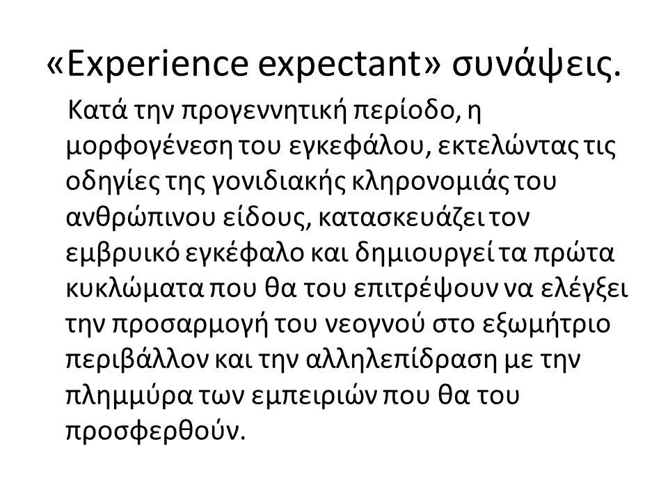 «Experience- dependent» συνάψεις μετά τη γέννηση