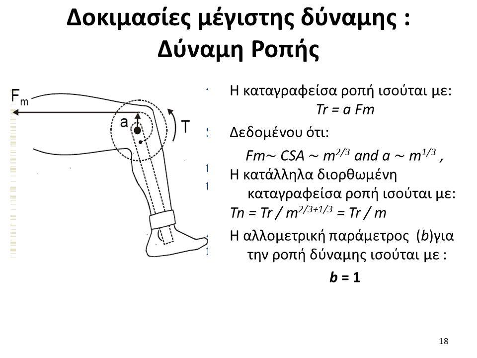 Δοκιμασίες μέγιστης δύναμης : Δύναμη Ροπής 18 Η καταγραφείσα ροπή ισούται με: Tr = a Fm Δεδομένου ότι: Fm ∼ CSA ∼ m 2/3 and a ∼ m 1/3, Η κατάλληλα διορθωμένη καταγραφείσα ροπή ισούται με: Tn = Tr / m 2/3+1/3 = Tr / m Η αλλομετρική παράμετρος (b)για την ροπή δύναμης ισούται με : b = 1