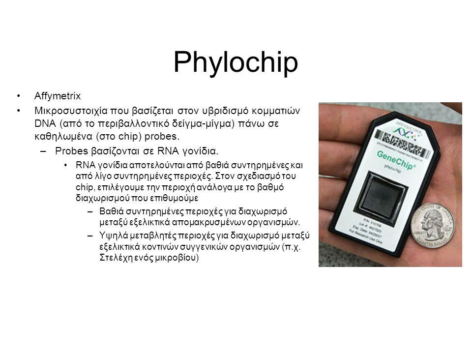 Phylochip Affymetrix Μικροσυστοιχία που βασίζεται στον υβριδισμό κομματιών DNA (από το περιβαλλοντικό δείγμα-μίγμα) πάνω σε καθηλωμένα (στο chip) probes.