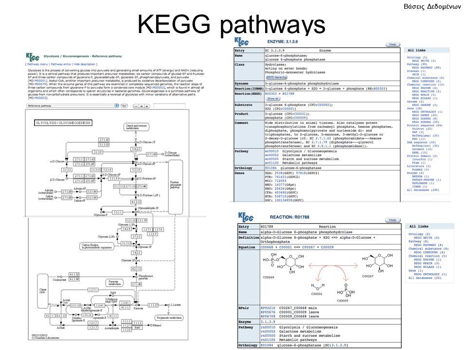 KEGG pathways Βάσεις Δεδομένων