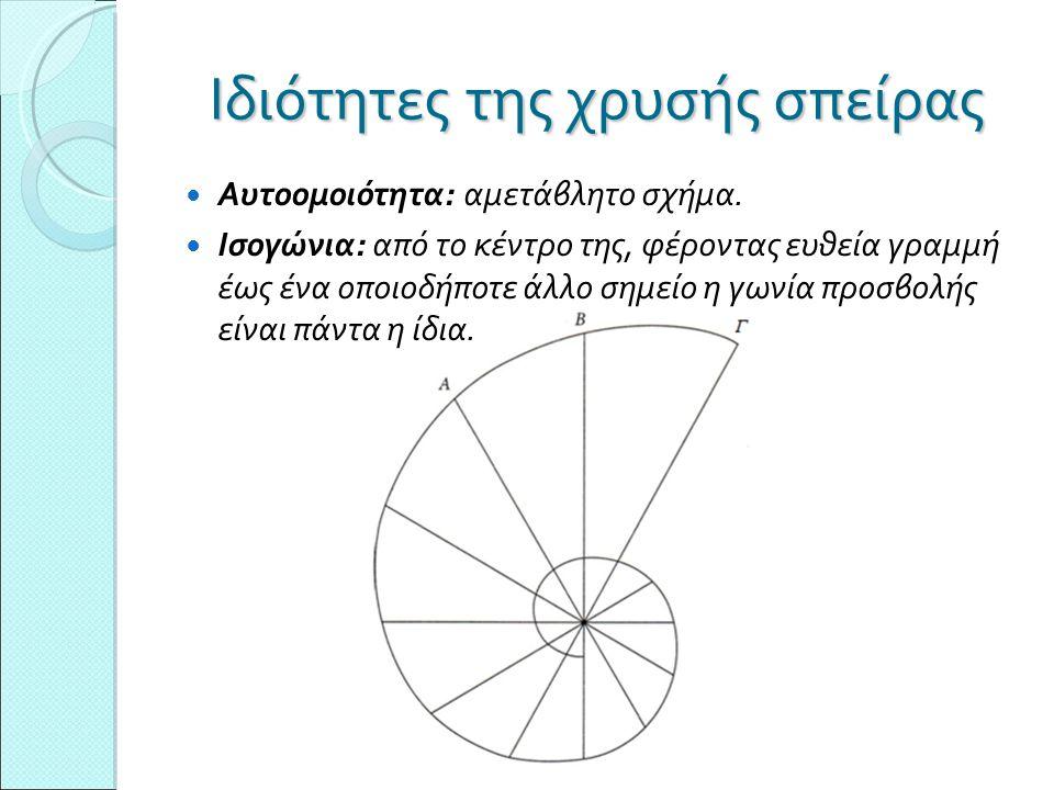 Ιδιότητες της χρυσής σπείρας Αυτοομοιότητα: αμετάβλητο σχήμα. Ισογώνια: από το κέντρο της, φέροντας ευθεία γραμμή έως ένα οποιοδήποτε άλλο σημείο η γω