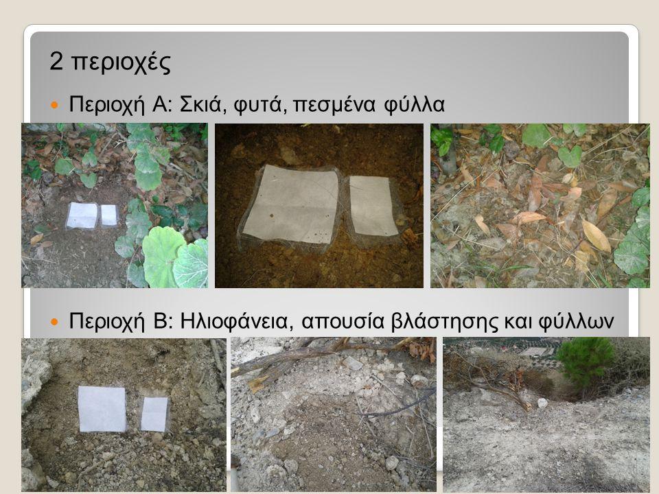 15/10/2014 (11 ημέρες) Θερμοκρασία περιβάλλοντος: 25 ο C και Σχετική υγρασία: 75% Αρχικά οι μάζες είχαν αυξηθεί λόγω υγρασίας και κομμάτια χώματος αλλά μετά από 1-2 μέρες και λίγο τίναγμα προέκυψαν τα παρακάτω αποτελέσματα: Μάζες περιοχής Α: Τεμάχιο 10Χ10 cm 2 : 1,07 από 1,17 g (αποικοδόμηση: 0,1 g) και Τεμάχιο 8Χ5 cm 2 : 0,56 από 0,62 g (αποικοδόμηση: 0,06 g) Μάζες περιοχής Β: 1,28 g (από 1,28 g) και 0,56 g (από 0,56 g) (αποικοδόμηση: 0 g) Περιοχή Α Περιοχή Β Σκιά, φυτά, πεσμένα φύλλα Ηλιοφάνεια, απουσία βλάστησης και φύλλων