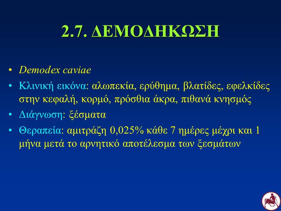 2.7. ΔΕΜΟΔΗΚΩΣΗ Demodex caviae Κλινική εικόνα: αλωπεκία, ερύθημα, βλατίδες, εφελκίδες στην κεφαλή, κορμό, πρόσθια άκρα, πιθανά κνησμός Διάγνωση: ξέσμα