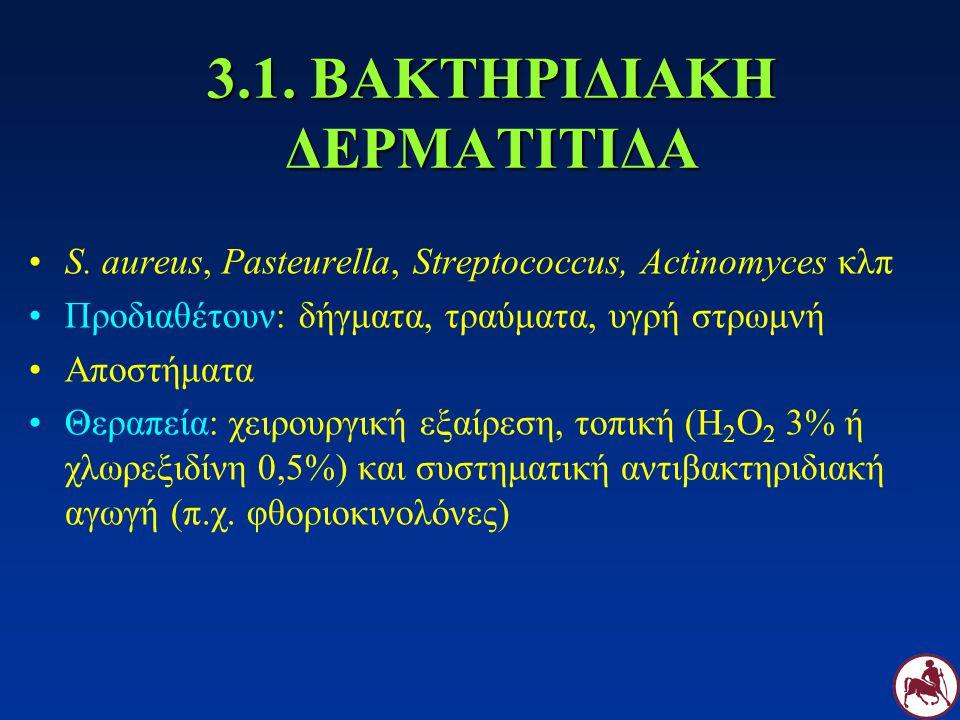 3.1. ΒΑΚΤΗΡΙΔΙΑΚΗ ΔΕΡΜΑΤΙΤΙΔΑ S. aureus, Pasteurella, Streptococcus, Actinomyces κλπ Προδιαθέτουν: δήγματα, τραύματα, υγρή στρωμνή Αποστήματα Θεραπεία