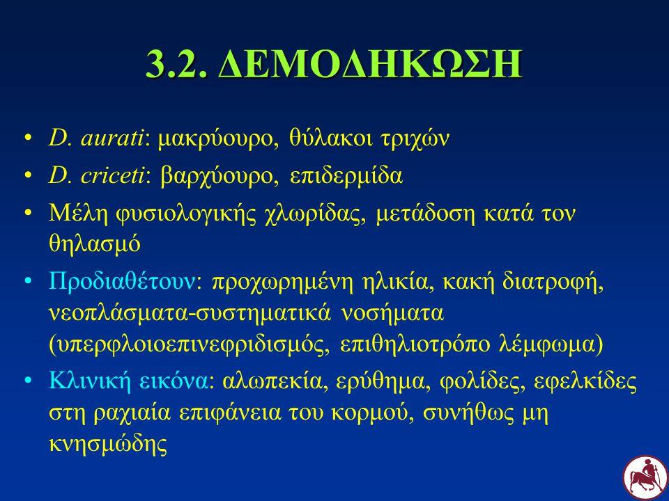 3.2. ΔΕΜΟΔΗΚΩΣΗ D. aurati: μακρύουρο, θύλακοι τριχών D. criceti: βαρχύουρο, επιδερμίδα Μέλη φυσιολογικής χλωρίδας, μετάδοση κατά τον θηλασμό Προδιαθέτ