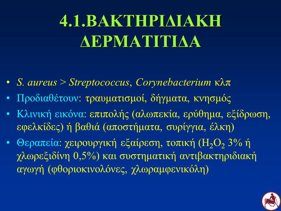4.1.ΒΑΚΤΗΡΙΔΙΑΚΗ ΔΕΡΜΑΤΙΤΙΔΑ S. aureus > Streptococcus, Corynebacterium κλπ Προδιαθέτουν: τραυματισμοί, δήγματα, κνησμός Κλινική εικόνα: επιπολής (αλω