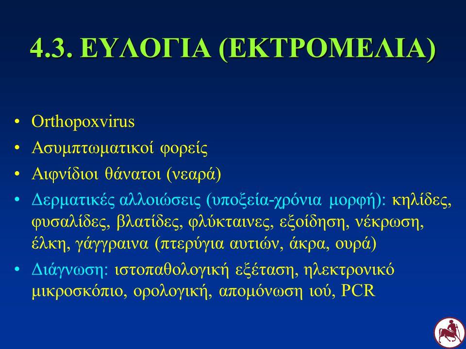 4.3. ΕΥΛΟΓΙΑ (ΕΚΤΡΟΜΕΛΙΑ) Orthopoxvirus Ασυμπτωματικοί φορείς Αιφνίδιοι θάνατοι (νεαρά) Δερματικές αλλοιώσεις (υποξεία-χρόνια μορφή): κηλίδες, φυσαλίδ