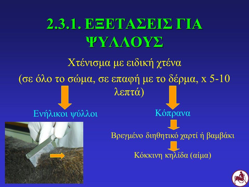 2.3.1. ΕΞΕΤΑΣΕΙΣ ΓΙΑ ΨΥΛΛΟΥΣ Χτένισμα με ειδική χτένα (σε όλο το σώμα, σε επαφή με το δέρμα, x 5-10 λεπτά) Ενήλικοι ψύλλοι Κόπρανα Βρεγμένο διηθητικό