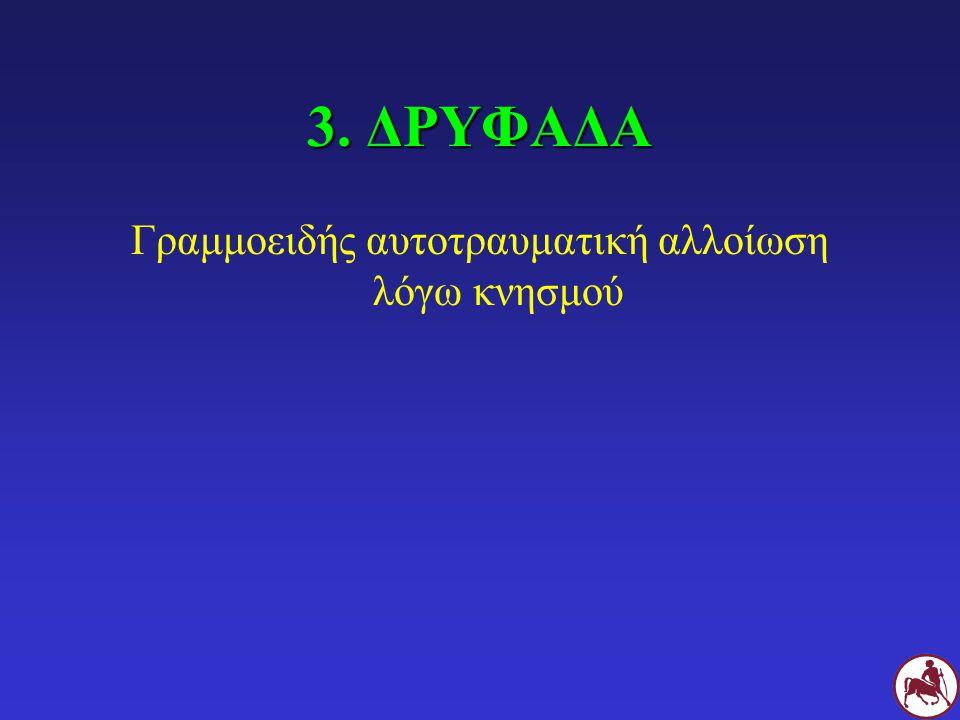 3. ΔΡΥΦΑΔΑ Γραμμοειδής αυτοτραυματική αλλοίωση λόγω κνησμού