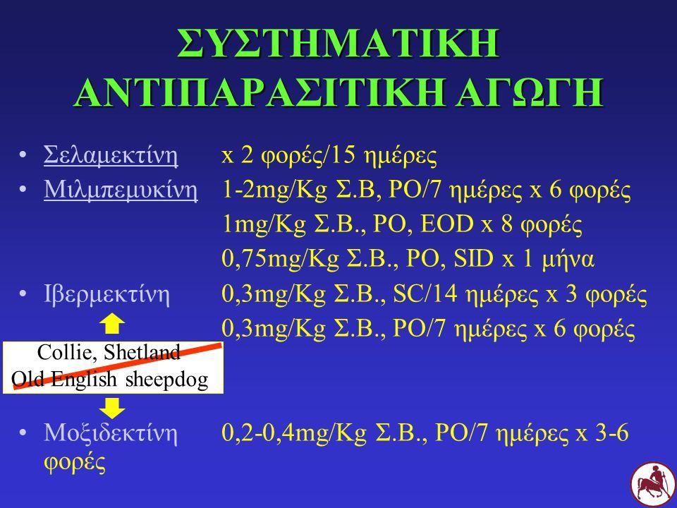 ΣΥΣΤΗΜΑΤΙΚΗ ΑΝΤΙΠΑΡΑΣΙΤΙΚΗ ΑΓΩΓΗ Σελαμεκτίνη x 2 φορές/15 ημέρες Μιλμπεμυκίνη1-2mg/Kg Σ.Β, PO/7 ημέρες x 6 φορές 1mg/Kg Σ.Β., PO, EOD x 8 φορές 0,75mg
