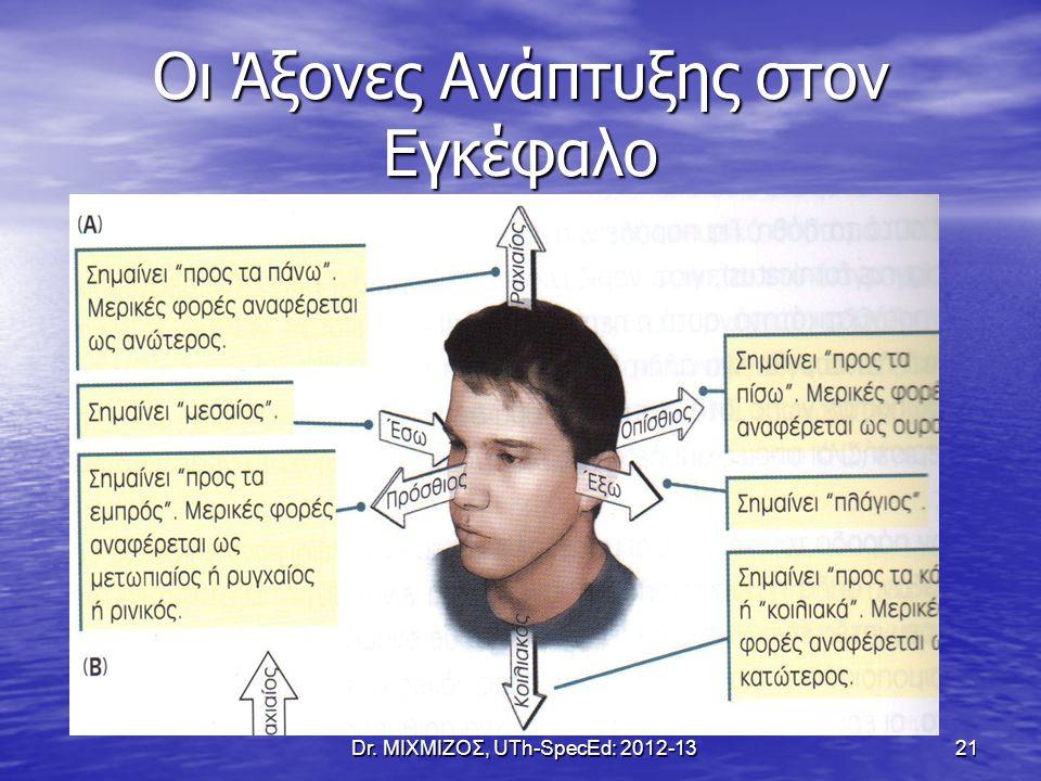 Οι Άξονες Ανάπτυξης στον Εγκέφαλο Dr. ΜΙΧΜΙΖΟΣ, UTh-SpecEd: 2012-1321