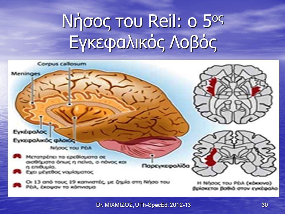 Νήσος του Reil: o 5 ος Εγκεφαλικός Λοβός Dr. ΜΙΧΜΙΖΟΣ, UTh-SpecEd: 2012-13 30