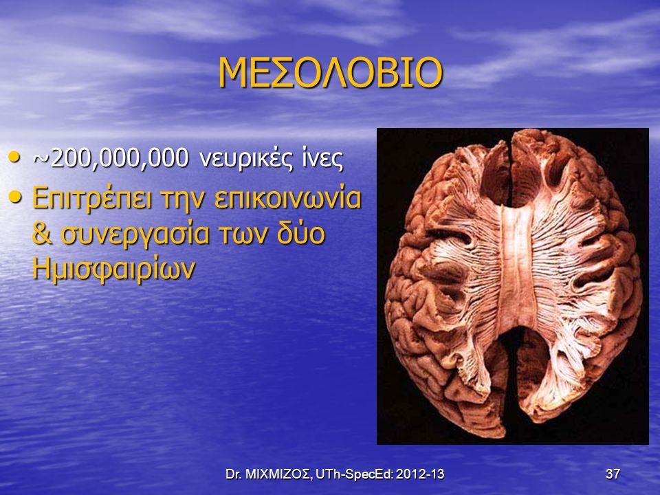 ΜΕΣΟΛΟΒΙΟ ~200,000,000 νευρικές ίνες ~200,000,000 νευρικές ίνες Επιτρέπει την επικοινωνία & συνεργασία των δύο Ημισφαιρίων Επιτρέπει την επικοινωνία &