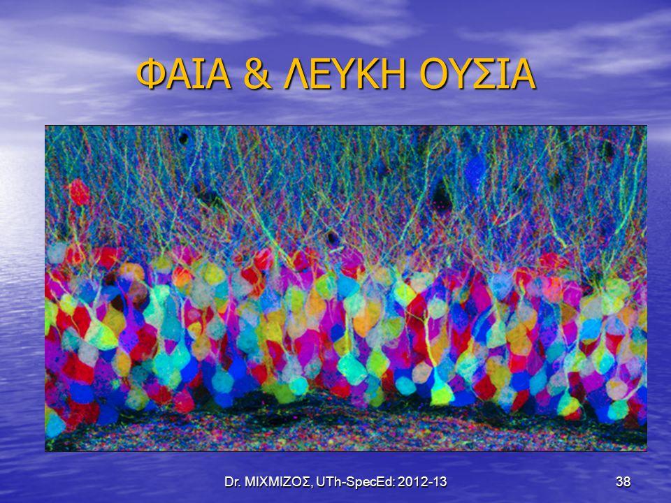 ΦΑΙΑ & ΛΕΥΚΗ ΟΥΣΙΑ Dr. ΜΙΧΜΙΖΟΣ, UTh-SpecEd: 2012-13 38