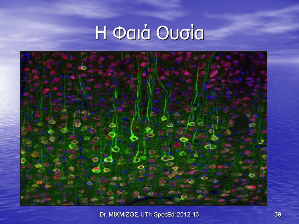 Η Φαιά Ουσία Dr. ΜΙΧΜΙΖΟΣ, UTh-SpecEd: 2012-13 39