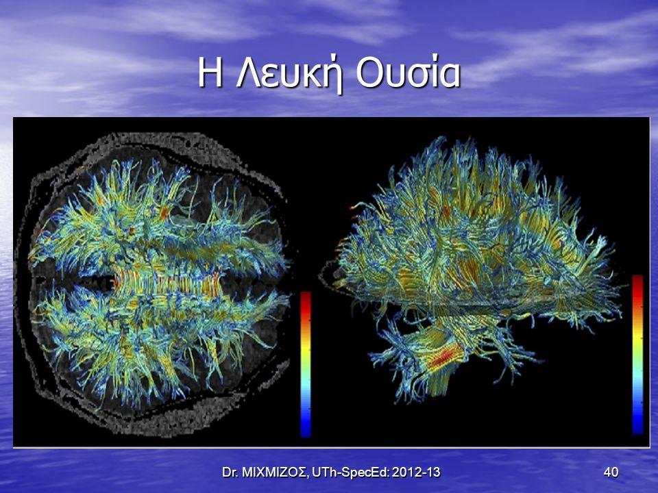 Η Λευκή Ουσία Dr. ΜΙΧΜΙΖΟΣ, UTh-SpecEd: 2012-13 40