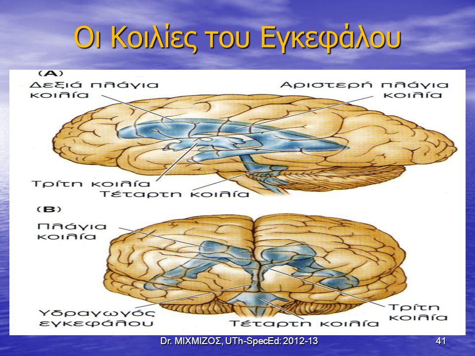 Οι Κοιλίες του Εγκεφάλου Dr. ΜΙΧΜΙΖΟΣ, UTh-SpecEd: 2012-13 41