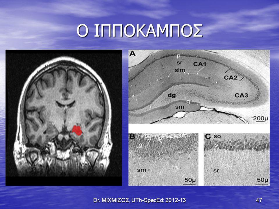 Ο ΙΠΠΟΚΑΜΠΟΣ Dr. ΜΙΧΜΙΖΟΣ, UTh-SpecEd: 2012-13 47