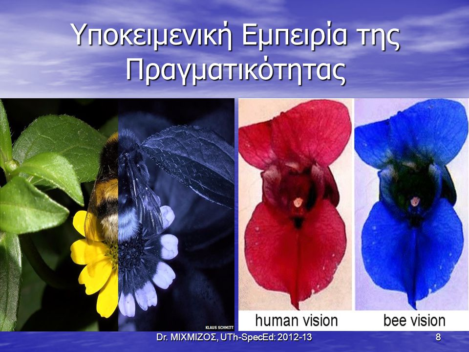 Η Χρωματική Αντίληψη των Σκύλων Dr. ΜΙΧΜΙΖΟΣ, UTh-SpecEd: 2012-13 9