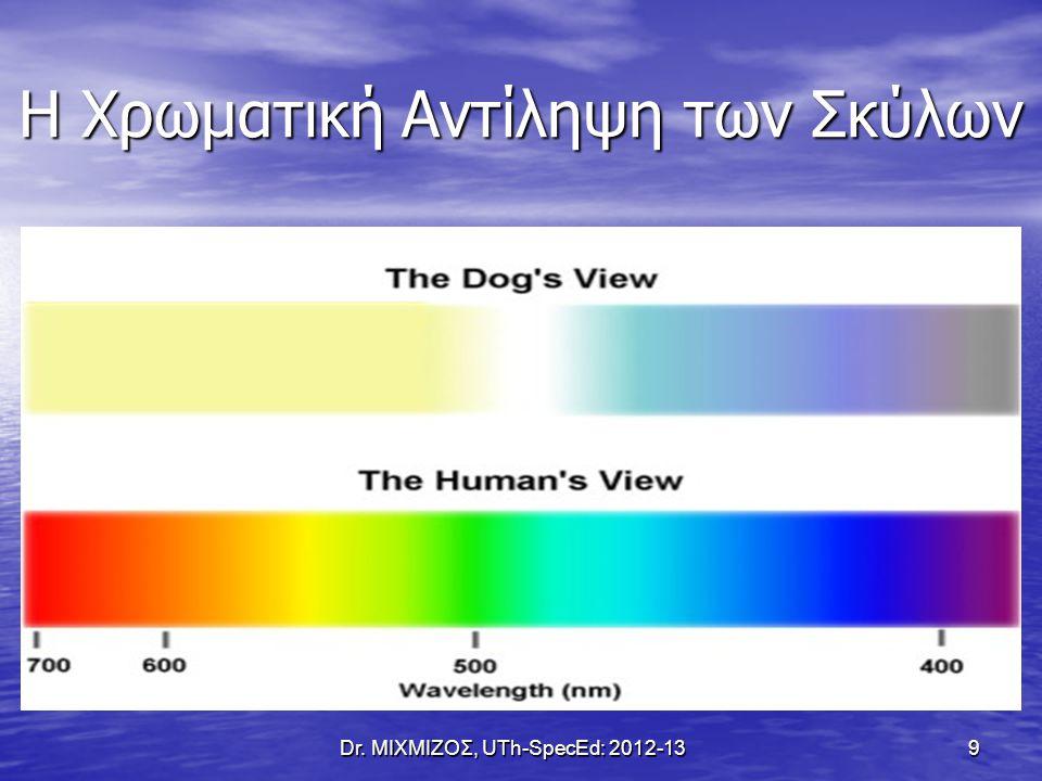 Οι Άξονες Ανάπτυξης στον Άνθρωπο Dr. ΜΙΧΜΙΖΟΣ, UTh-SpecEd: 2012-13 20